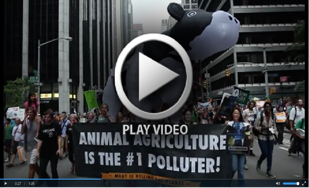 Cowspiracy - New York climate change march