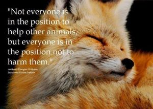 Not everyone is in a position to help but everyone is in a position not to harm them